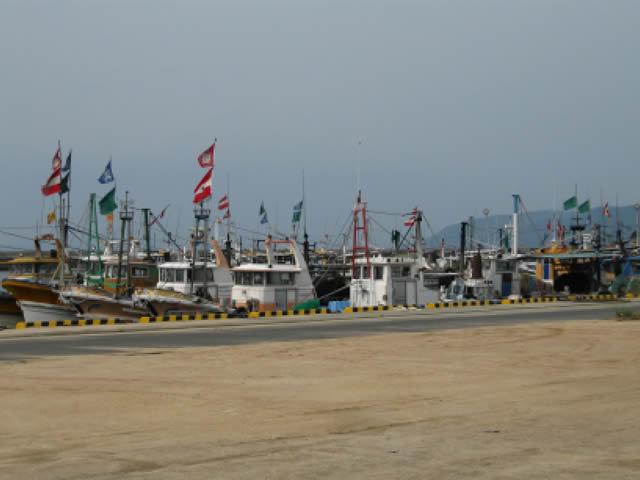 写真1:漁港にたくさんの漁船が並んで停泊している写真です。