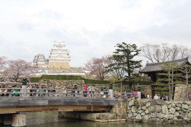 写真:白が映える白鷺城姫路城