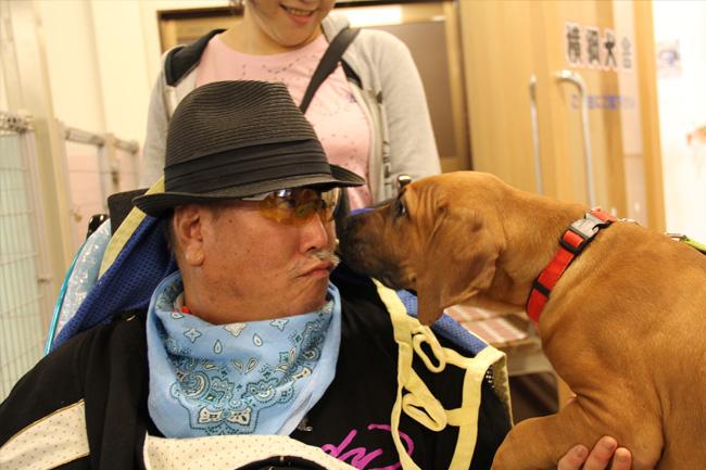 写真:子犬から歓迎のキス