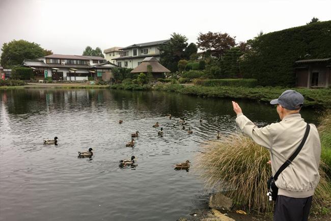 写真:池の鳥と遊ぶお客様