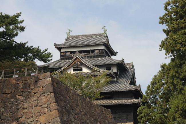 写真:松江城を見上げる