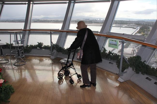 写真:タワー内部から景色を眺めるお客様
