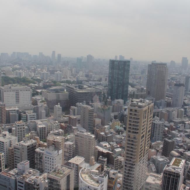 写真:展望台からの眺め