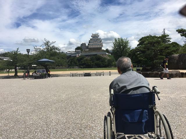 写真:姫路城を見る