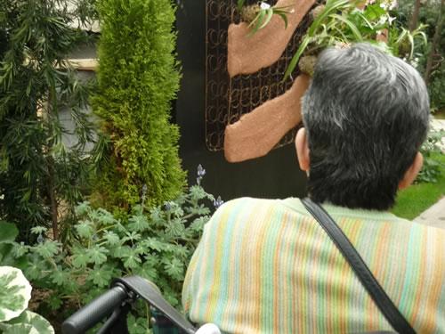 写真:奇跡の星の植物園を鑑賞。