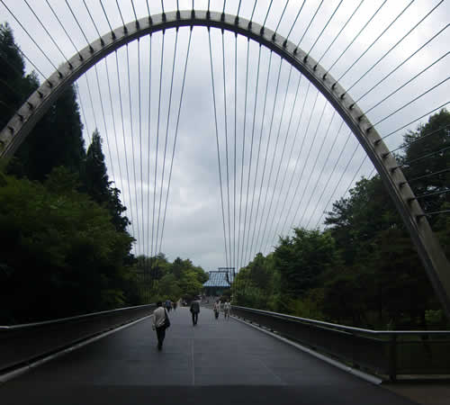 写真:橋を通って美術館へ