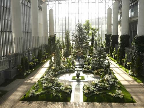 写真:奇跡の星の植物館の内部